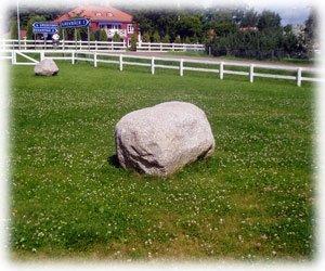 Sten på gräsmatta