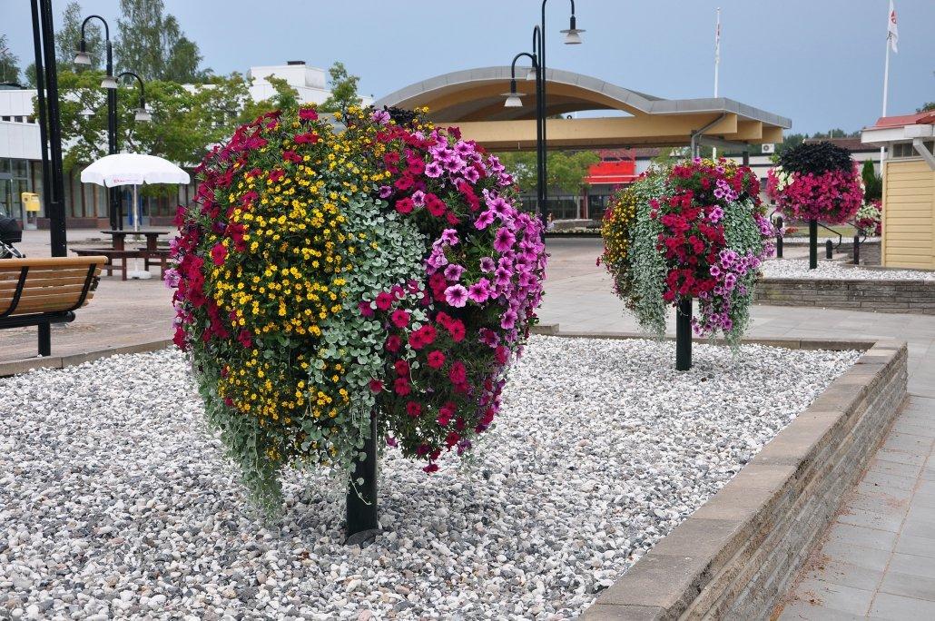 Blomsterträd i offentlig miljö