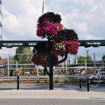 Blomsterskulptur