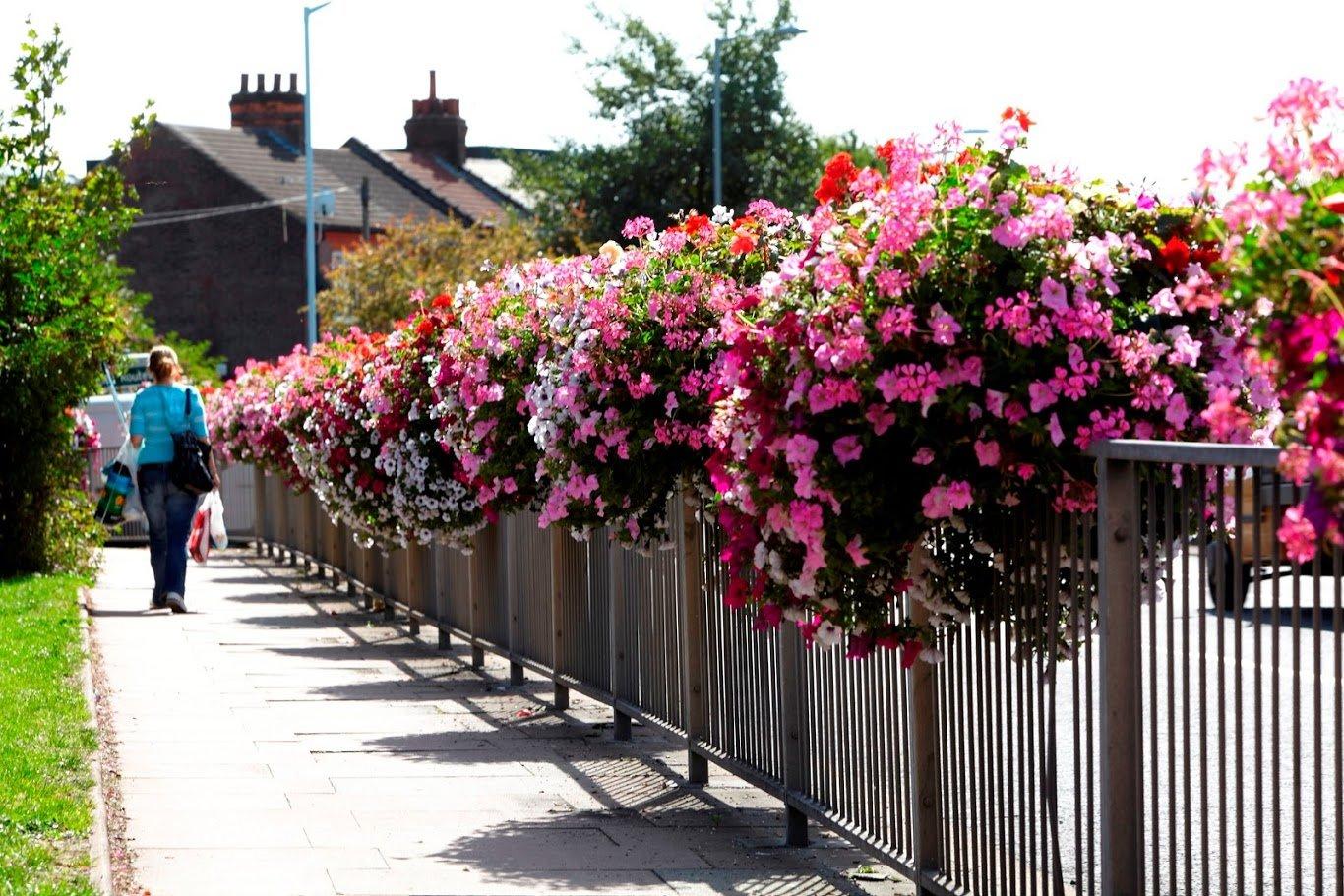 Räckeslådor med blommor