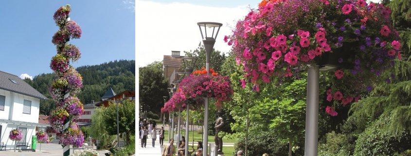 Stolpamplar i två olika miljöer